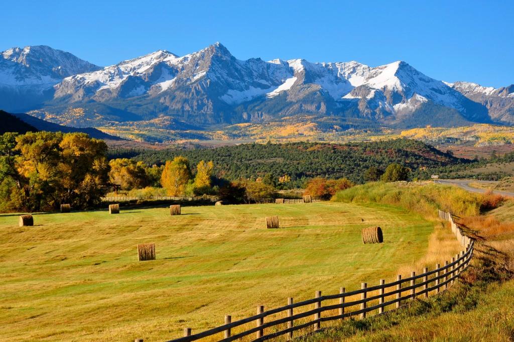 Colorado_State