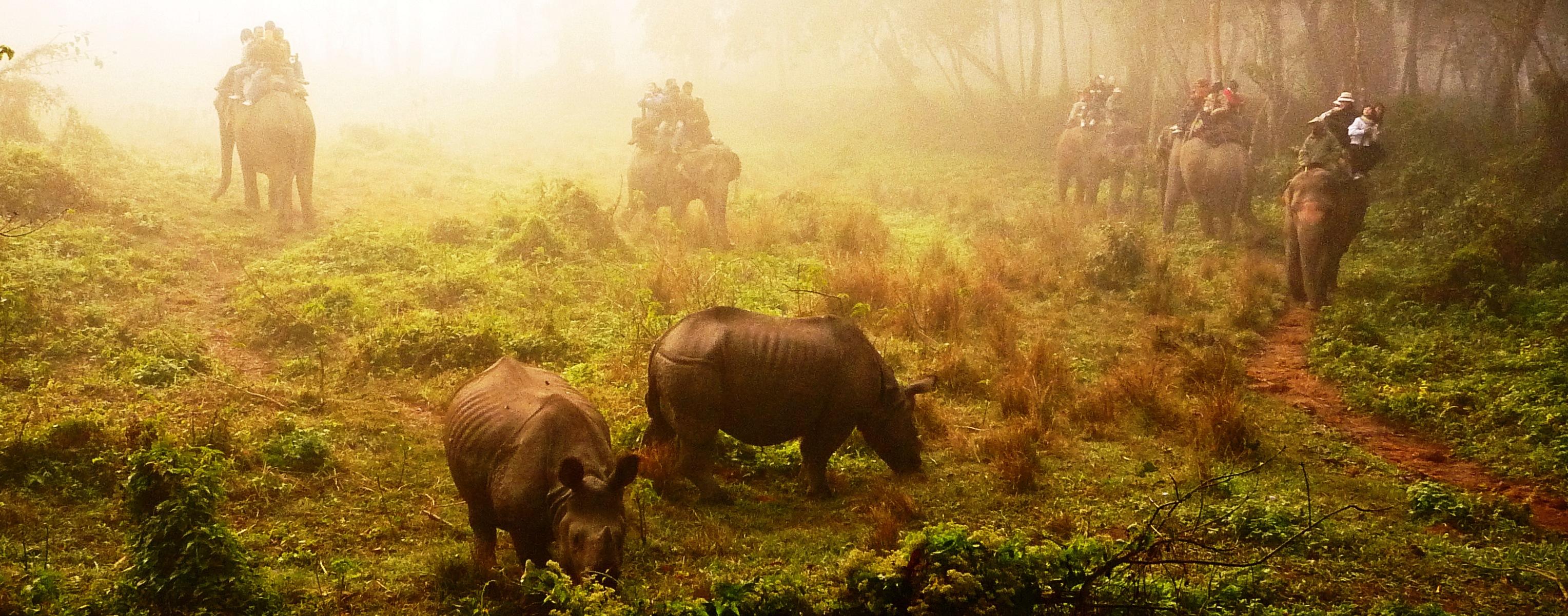 Elephant Riding Nepal
